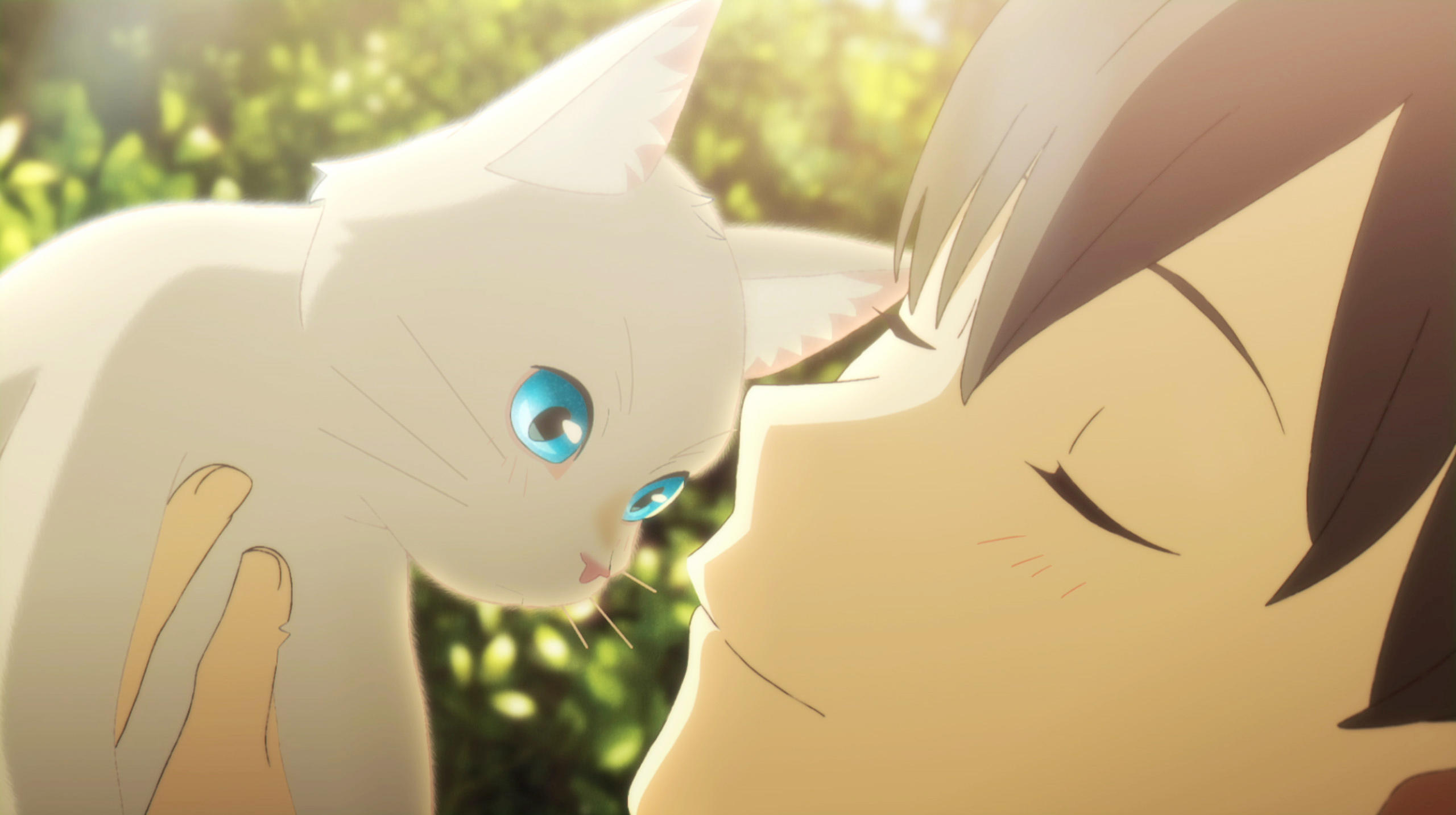 Netflixアニメ映画『泣きたい私は猫をかぶる』初解禁の本編シーンを含む特別映像公開!