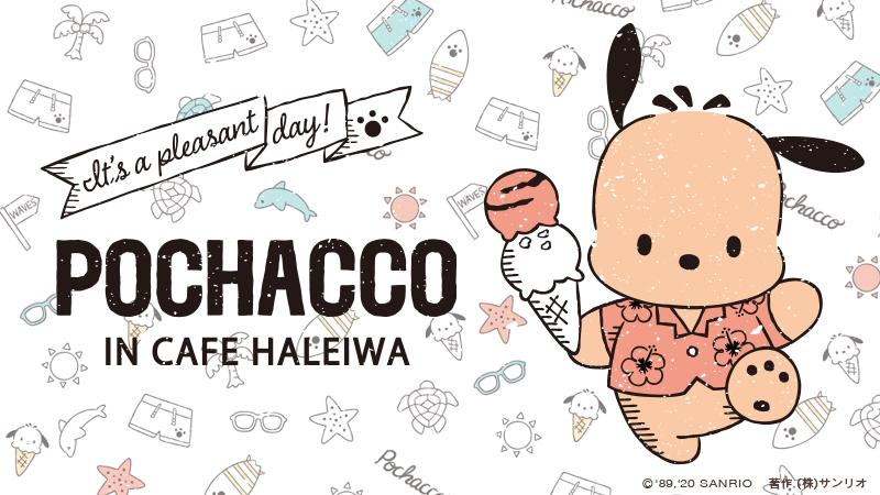 『サンリオ』ポチャッコ×ハワイアンカフェ「HALEIWA」コラボ開催決定!日焼けしたポチャッコが超キュート