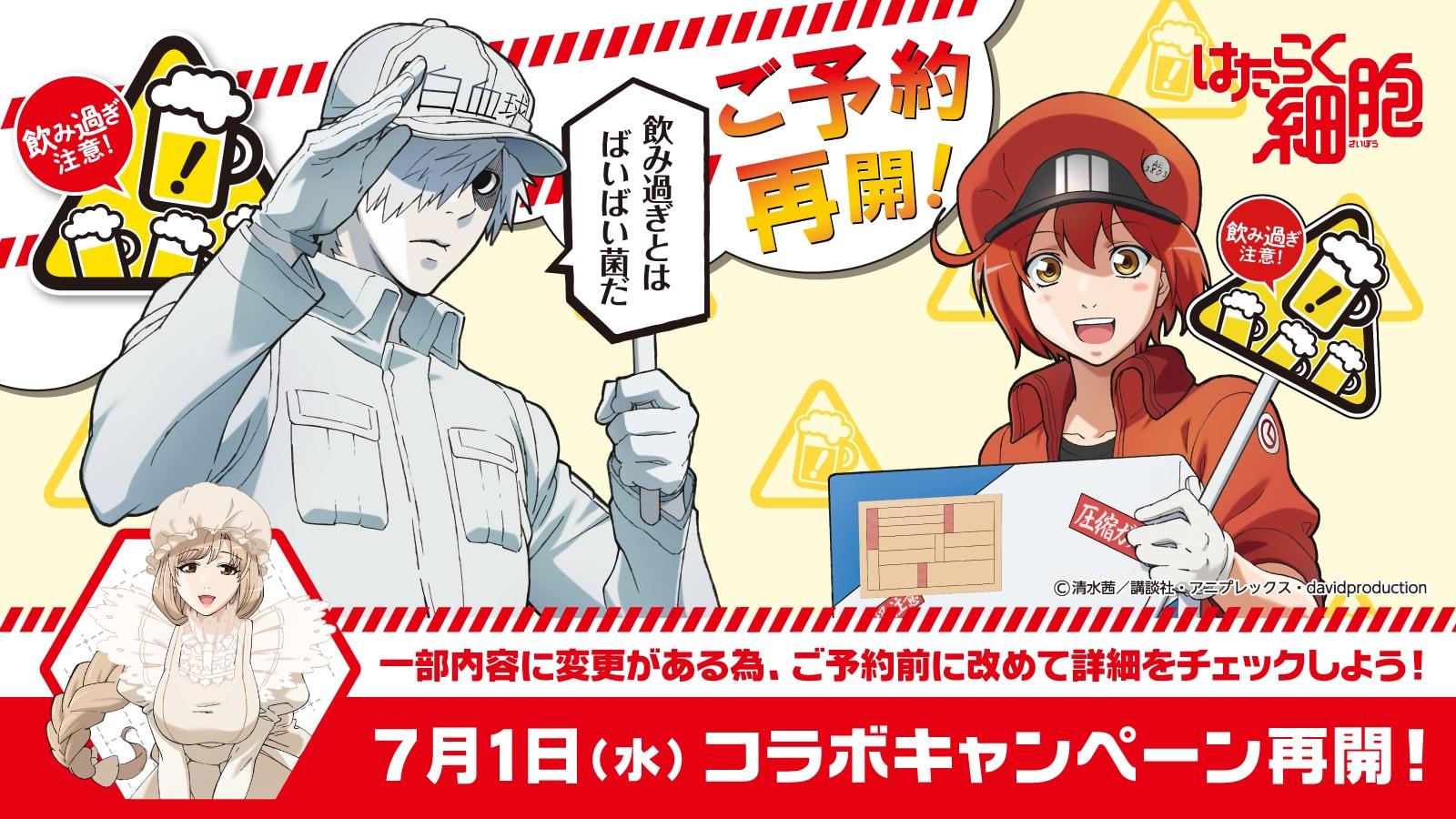 TVアニメ『はたらく細胞』×居酒屋チェーン店コラボ再始動決定!限定グッズやサイン入りポスターもらえる