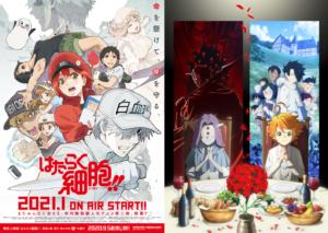 TVアニメ「はたらく細胞!!」&「約束のネバーランド Season2」キービジュアル