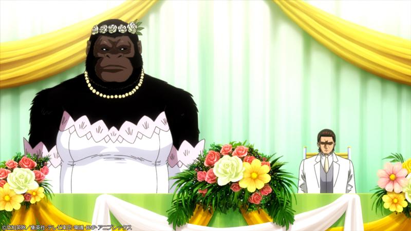映画の前日譚「銀魂 THE SEMI-FINAL」真選組篇のあらすじ・先行カット・予告解禁!近藤がゴリラと結婚します
