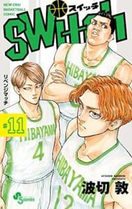 switch (11)