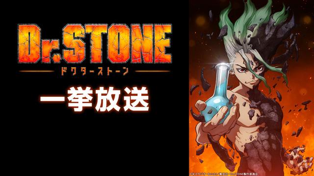 TVアニメ「Dr.STONE第1期」一挙配信決定!第2期地上波放送前にみんなで1期をおさらい