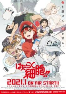 TVアニメ「「はたらく細胞!!」」キービジュアル