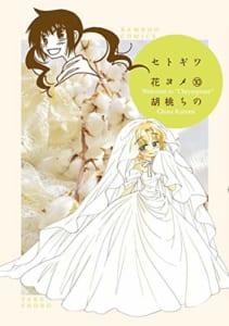セトギワ花ヨメ(10)