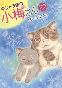 キジトラ猫の小梅さん 22 (22巻)
