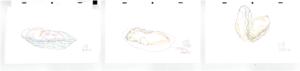 「23時の佐賀飯アニメ」第1夜「躍動。竹崎カキ」原画