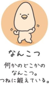 TVアニメ「チキップダンサーズ」キャラクター紹介 なんこつ