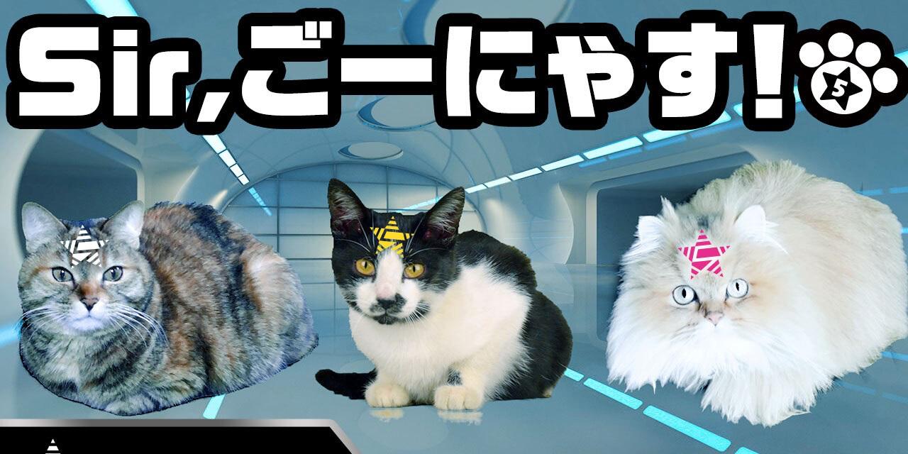男性声優5人組グループ「GOALOUS5」次のターゲットは猫!「ごーにゃす5」として再始動&メンバービジュアル公開【エイプリルフール】