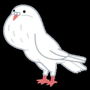 ポーターのイラスト(鳩)