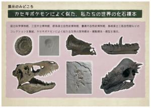 巡回展「ポケモン化石博物館」見どころ3