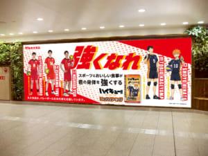 「ハイキュー!!」×バレーボール日本代表選手特別ビジュアル
