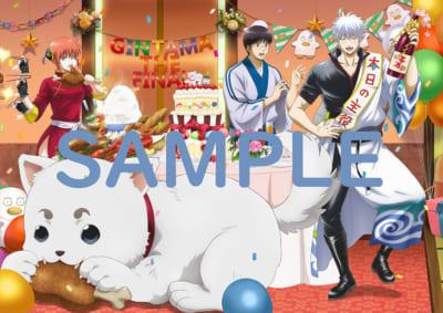 「銀魂 THE FINAL」Blu-ray&DVD 店舗別購入特典 アニメイト 描き下ろしB3クリアポスター(銀時、新八、神楽、定春)