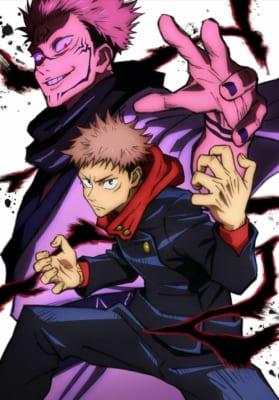 TVアニメ 呪術廻戦 Vol.1 初回生産限定版