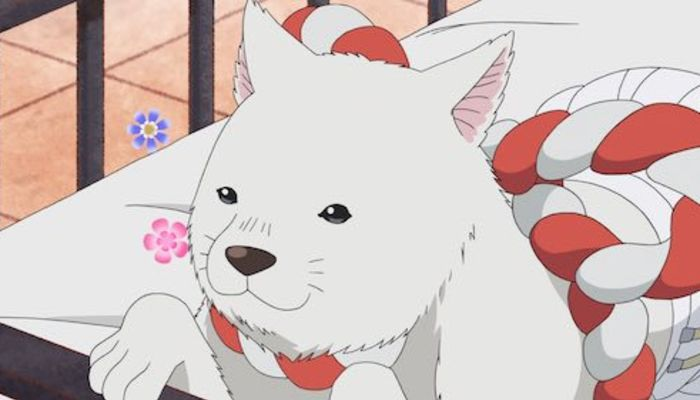 小林由美子さんが演じる好きなキャラ投票開始!やっぱりシロ?しんのすけ?【アンケート】