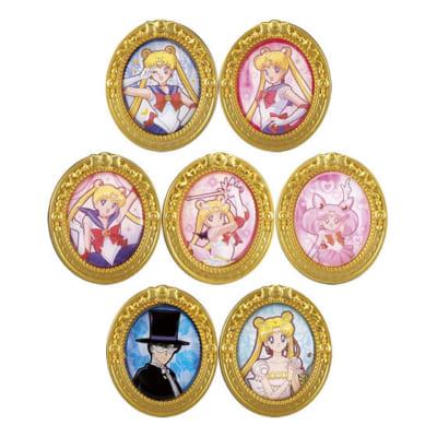 ガシャポンくじ「美少女戦士セーラームーン 乙女のアソートコレクション」第二弾C賞:額縁ピンズ」