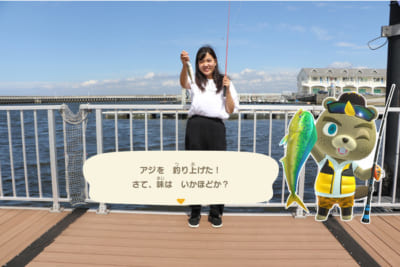 『あつまれ どうぶつの森 × 横浜・八景島シーパラダイス はっけい島 海の生きもの ふれあい展』サカナ釣り