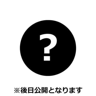 「一番くじ ワンピース vol.100 Anniversary」ラストワン賞 ヤマト フィギュア