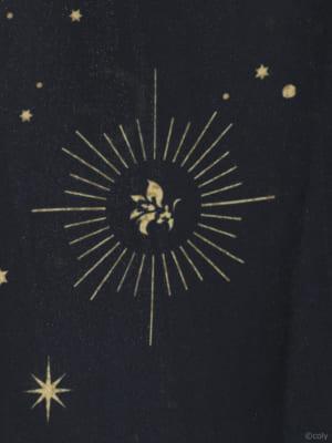 「魔法使いの約束」× earth music&ecology Japan Label 魔法使いの約束 チュールスカート模様アップ
