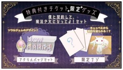 「魔法少女まどか☆マギカ」ワルプルギスの夜からの脱出 特典付きチケット