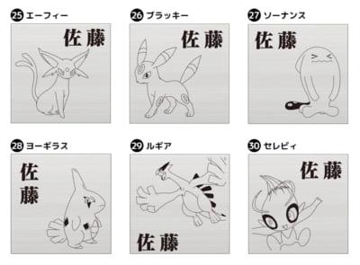 「Pokémon SIGN」ポケモン6