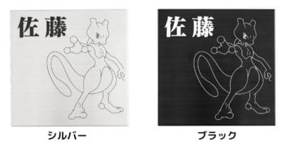 「Pokémon SIGN」カラーバリエーション
