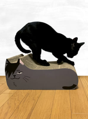 ハイキュー!! TO THE TOP×キャラアニ.com ポップアップショップ 猫の爪とぎ 黒尾ネコ 使用図