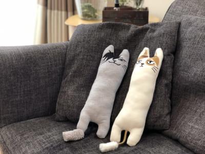 ハイキュー!! TO THE TOP×キャラアニ.com ポップアップショップ ネコますこっと 黒尾ネコ・研磨ネコ、寄り添う