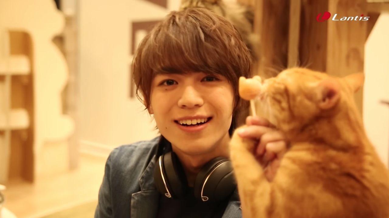 イケメン x 猫は最高なんですよ!DearDreamが可愛い猫と戯れる超癒やし動画が公開!