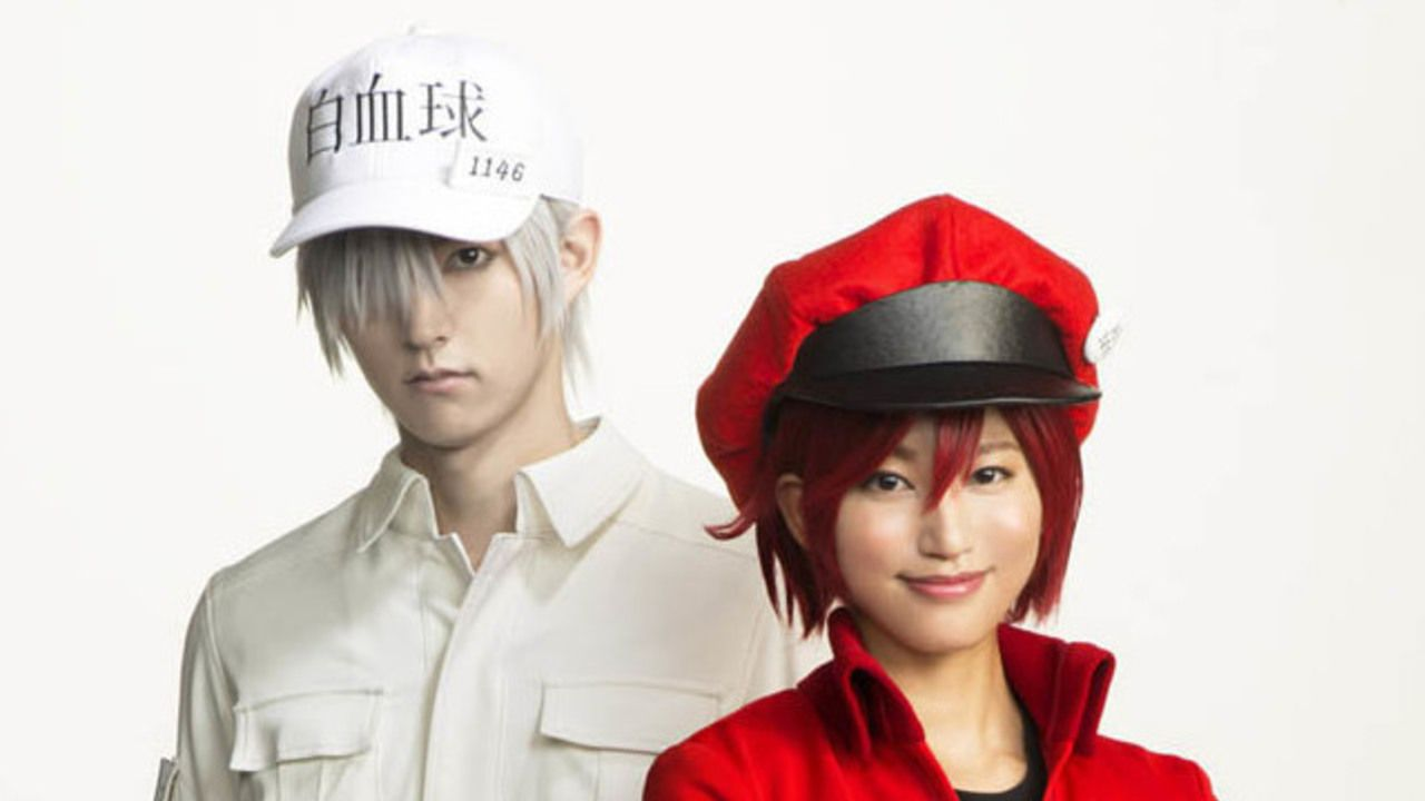 完成度高すぎ!舞台『はたらく細胞』和田雅成さん演じる白血球&七木奏音さん演じる赤血球のビジュアル公開!