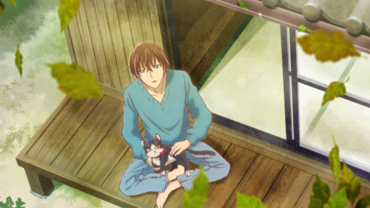 不器用な青年と1匹の猫、それぞれの視点で描くアニメ『同居人はひざ、時々、頭のうえ。』2019年放送決定!