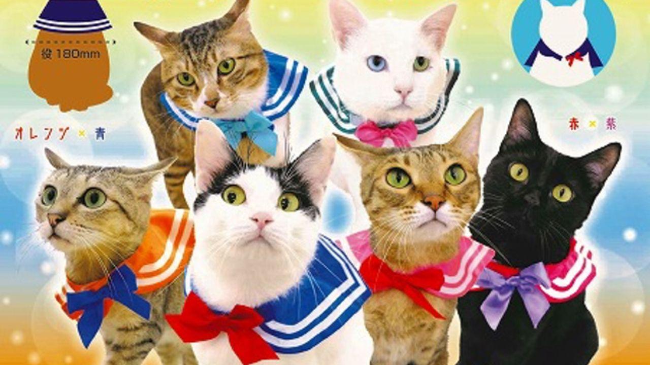 """美猫戦士にならお仕置きされたい!?某""""美少女戦士""""風カプセルトイ「ねこのセーラー服」登場!"""