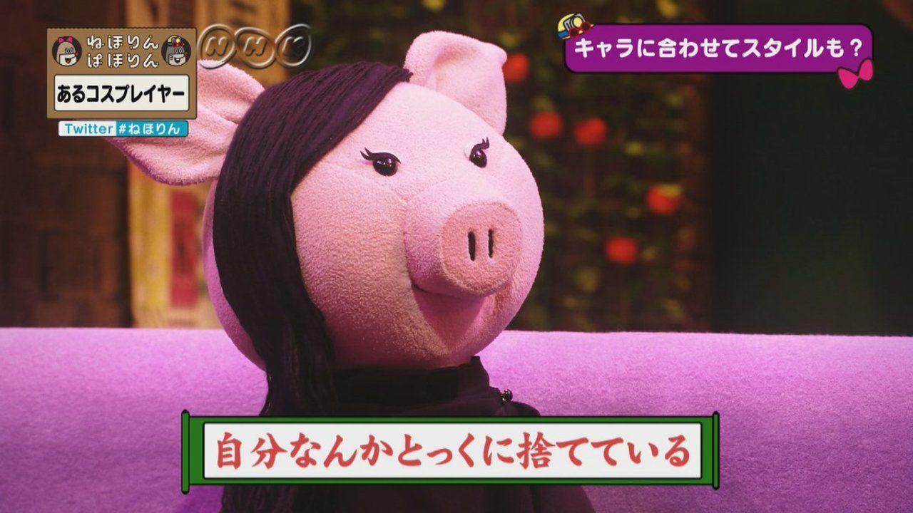 NHK「ねほりんぱほりん」に登場したあるコスプレイヤーの過去が壮絶すぎて「闇が深すぎる」と話題に