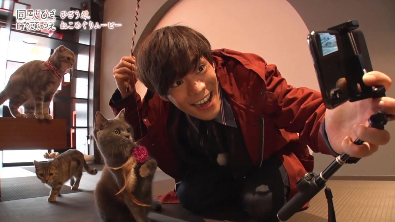 三度の飯より猫が好き!小野賢章さんが可愛い猫たちとふれあう超癒やし動画が公開中!