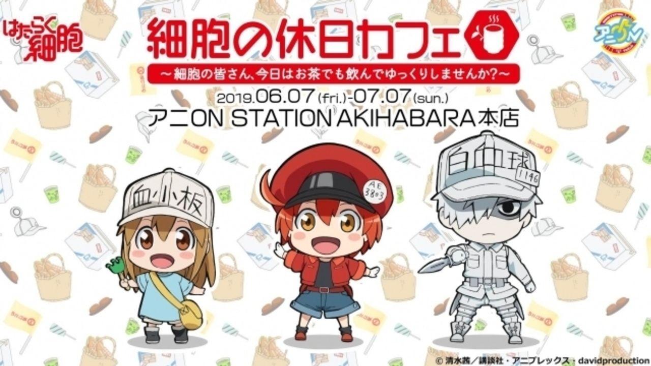 『はたらく細胞』x「アニON STATION」初のコラボカフェが6月オープン!オリジナルフード&グッズを販売