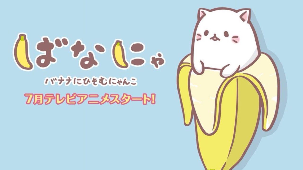 バナナにひそむにゃんこ『ばなにゃ』アニメ化決定!ばなにゃたちの声は梶裕貴さん!